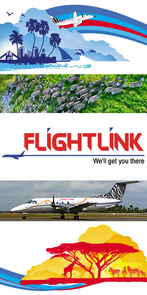 Flightlink Tanzania 300x600