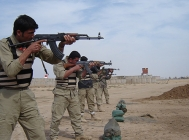 Outlook for Security Services in Iraq: 20-25%