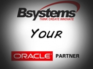 Systems Consulting, Integration and Software