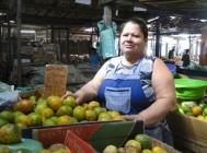 Development in Northeast Brazil: Alagoas