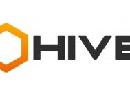 Hive Digital: Social Media and Game Development in