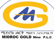 Gold mining in Ethiopia: Final feasibility study of gold in
