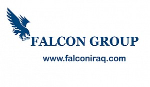 Falcon Security: Overview