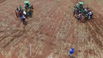 ghana-agriculture