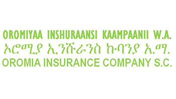 Top Insurance Companies in Ethiopia