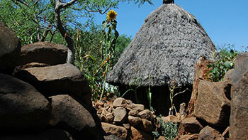 Top Travel Companies in Ethiopia