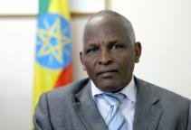 Minister-of-Mines-Ethiopia-Tolesa-Shagi-27-02-14