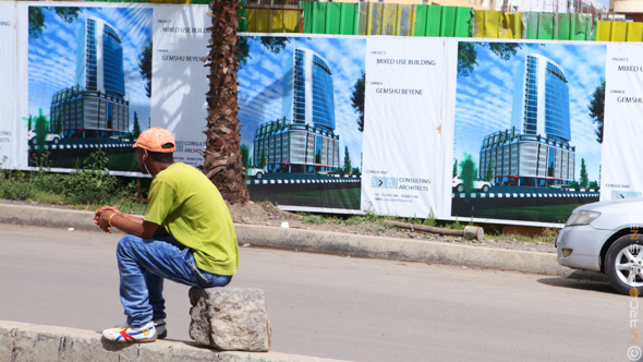 Real estate in Ethiopia growing by 25%, Role of private real estate companies in Ethiopia