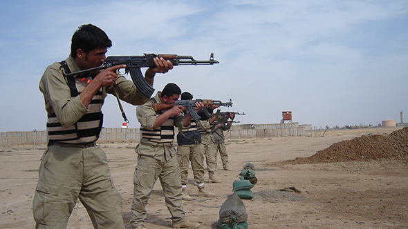 Outlook for Security Services in Iraq