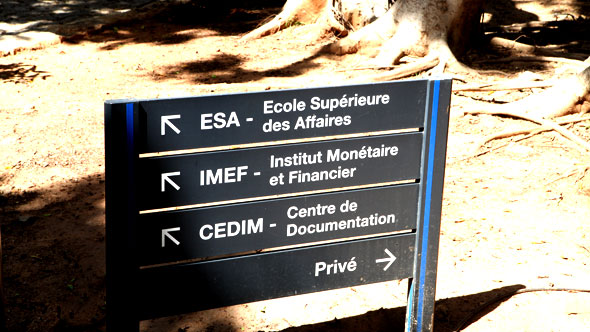 Innovation Policy at Ecole Superieure des Affaires (ESA)