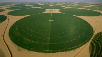 largest-agriculture-companies-in-saudi-arabia