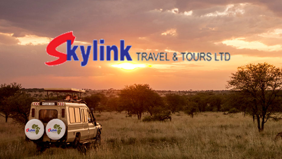 Skylink Travel & Tours Limited